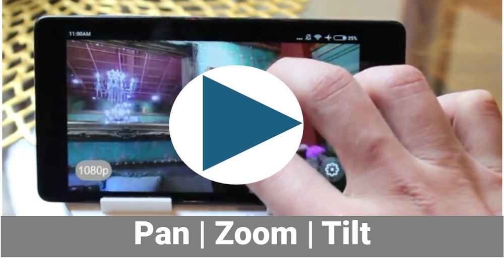 Zoom and Pan