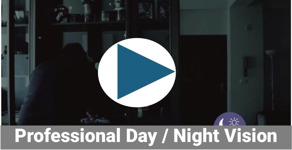 Day/Night Vision
